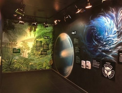 Creation & Earth Museum – Santee, CA
